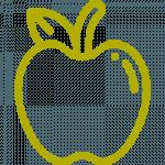 service apple