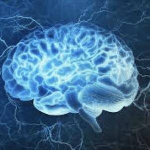 Brain impact neurosciences