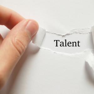 talents bizz factory