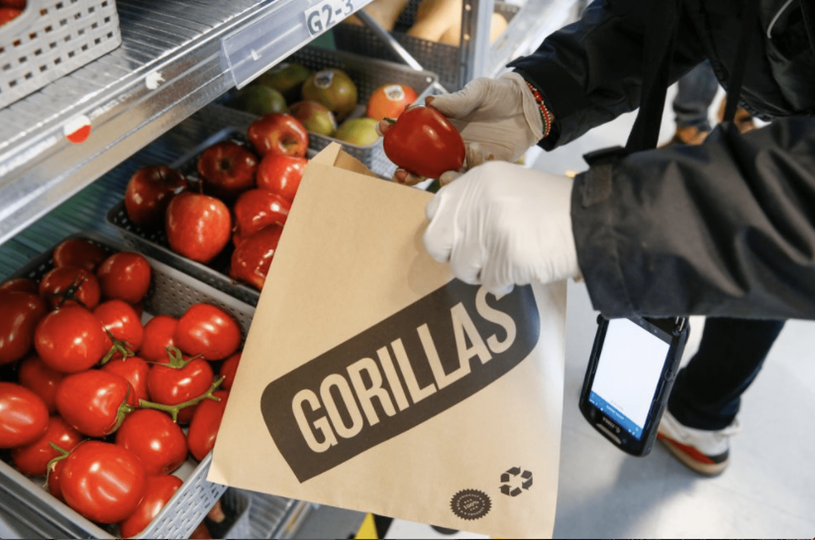 Read more about the article Gorillas